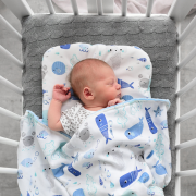 Bamboo baby pillow Planes