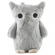 Foggy owl