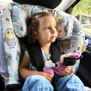 Bamboo car seat cover Hedgehogs girls