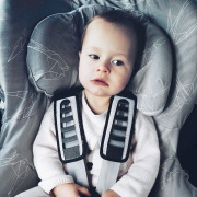 Bamboo car seat cover Heavenly birds