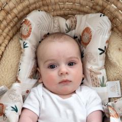 Bamboo baby pillow - Photosafari
